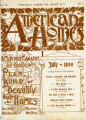 American Homes July 1899