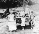 Johnson family canning tomatoes