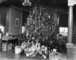 Knoxville Health Center Christmas tree, 1925